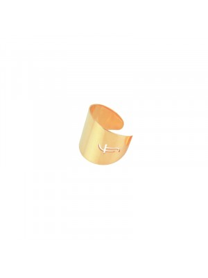 Δαχτυλίδι Just Fj tall ring rose gold